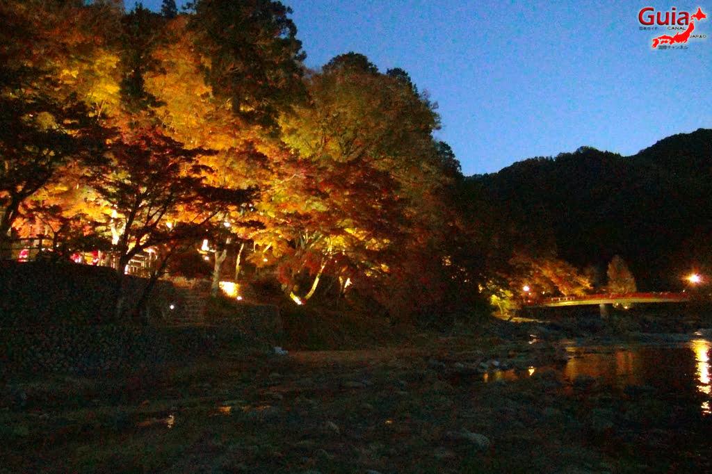 Park Korankei (香 嵐 渓) Toyota 27 Musim Gugur Daun