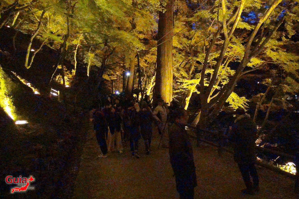 Park Korankei (香 嵐 渓) Toyota 31 Musim Gugur Daun