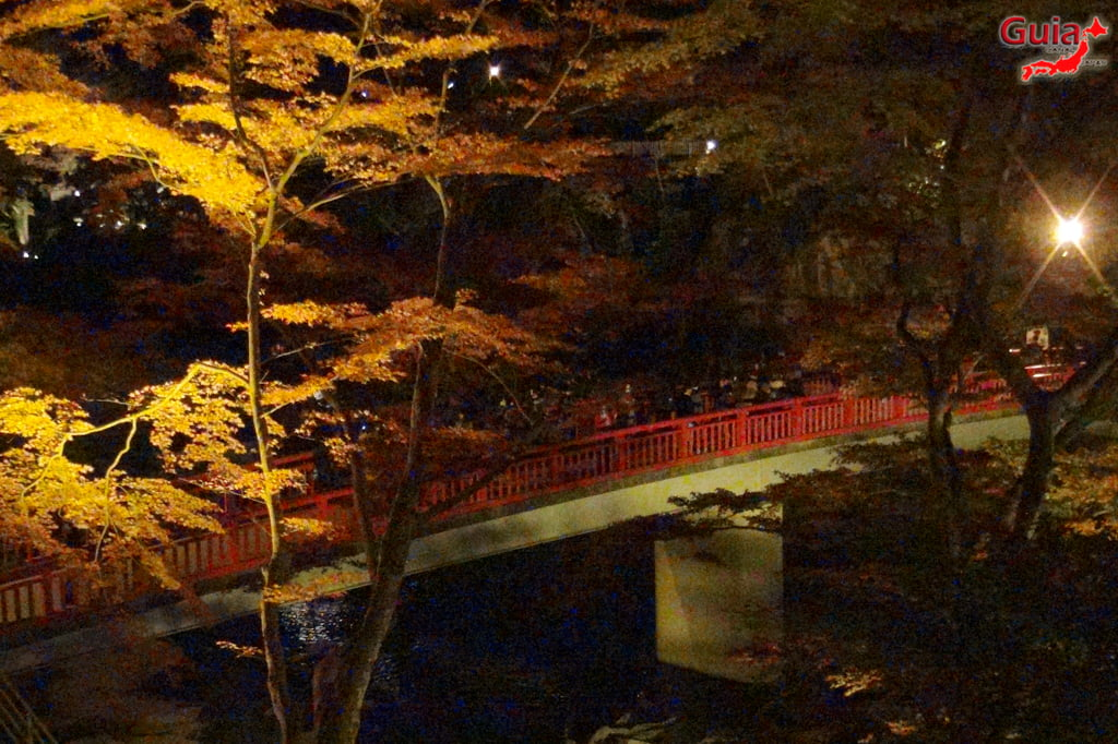 Park Korankei (香 嵐 渓) Toyota 30 Musim Gugur Daun
