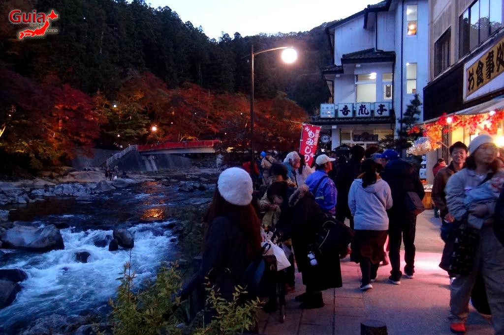 Park Korankei (香 嵐 渓) Toyota 41 Musim Gugur Daun