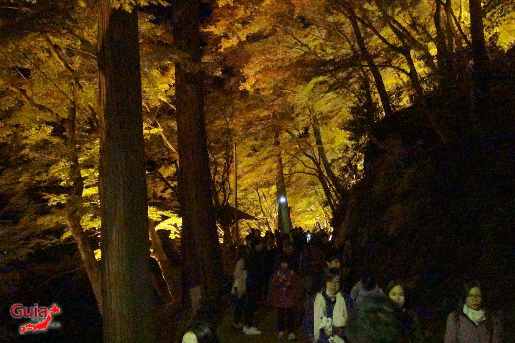 Park Korankei (香 嵐 渓) Toyota 43 Musim Gugur Daun