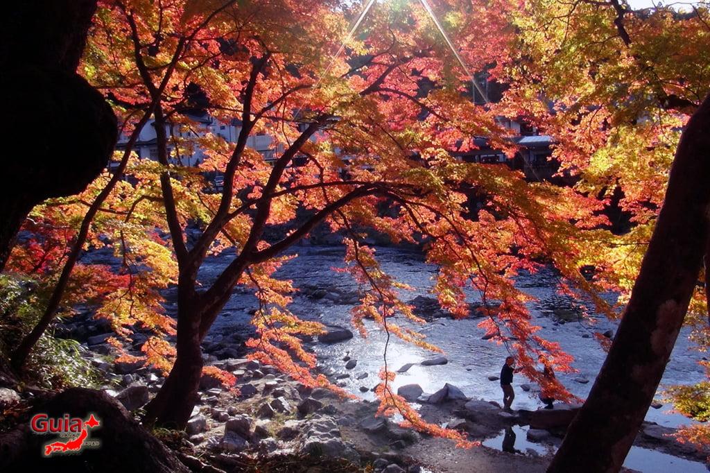Park Korankei (香 嵐 渓) Toyota 7 Musim Gugur Daun