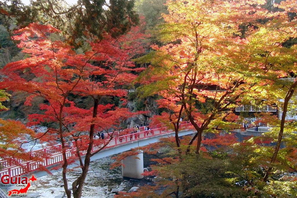 Park Korankei (香 嵐 渓) Toyota 9 Musim Gugur Daun