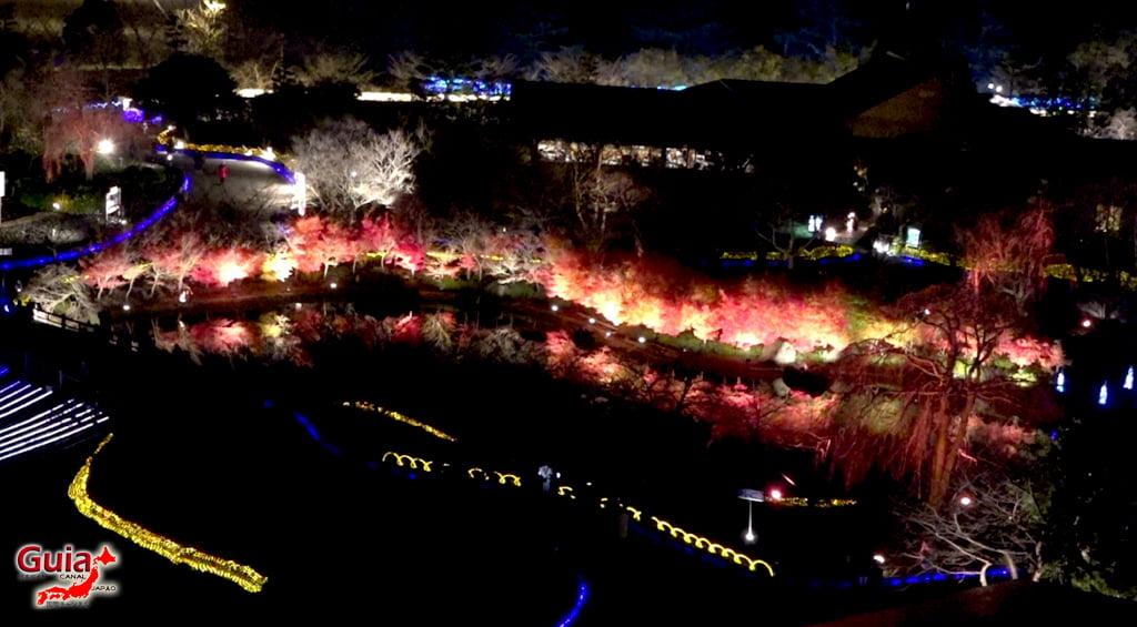 Nabana no Sato Lighting - Winter Lighting 19