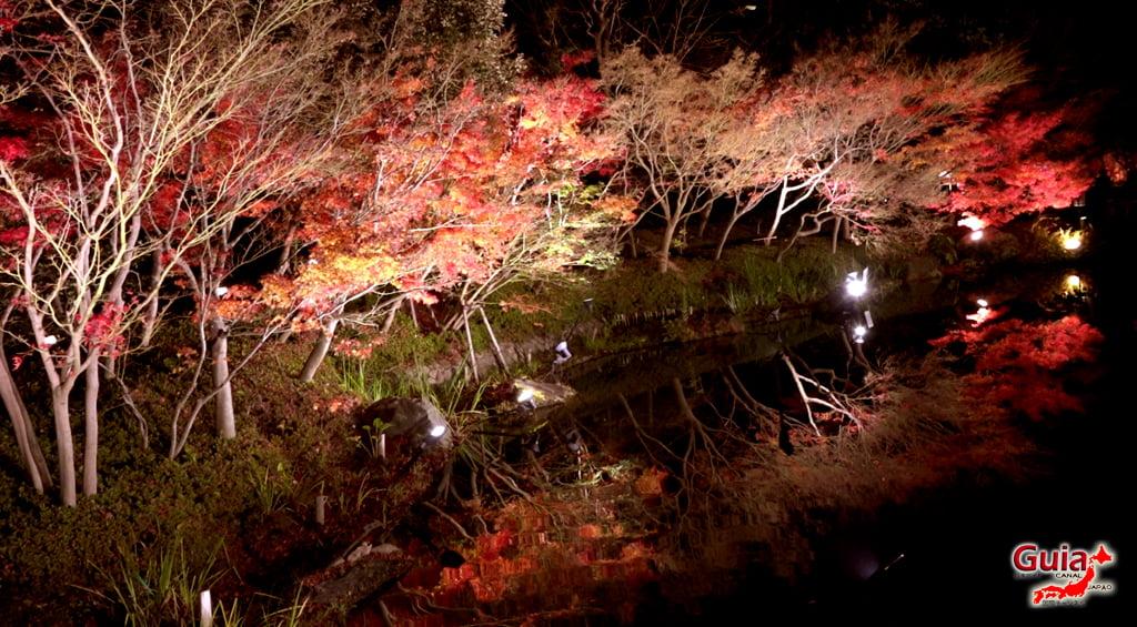 Nabana no Sato Lighting - Iluminación de invierno 21