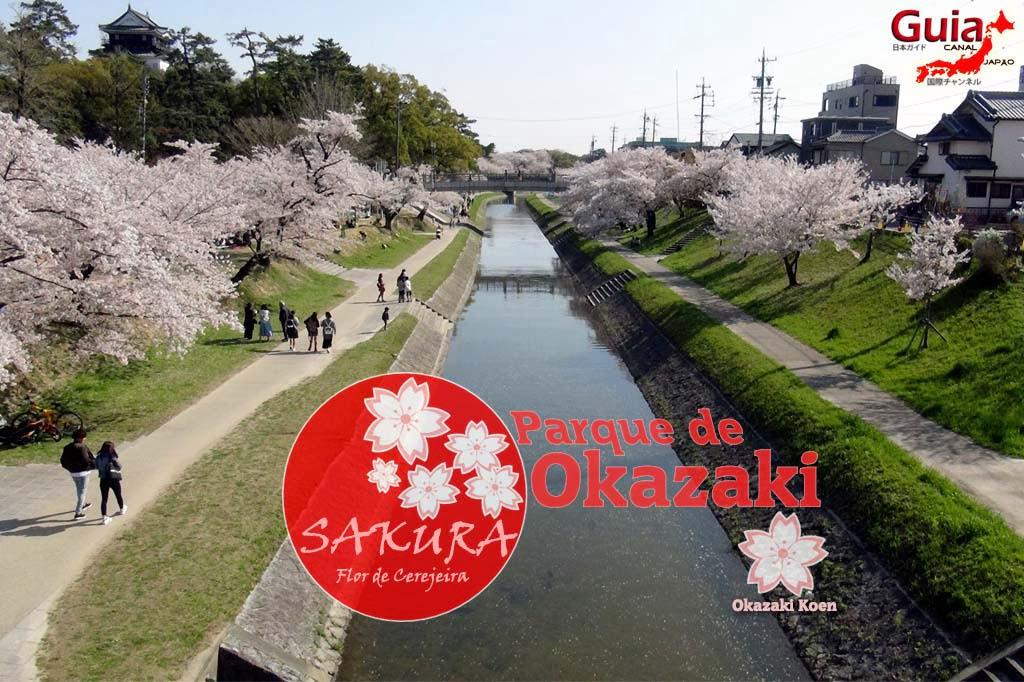 Okazaki Park - A spectacle of the sakura cherry blossoms 1