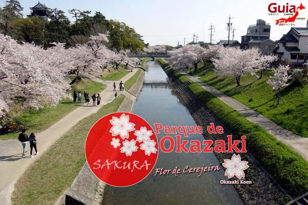 Okazaki Park - A spectacle of the sakura cherry blossoms 2
