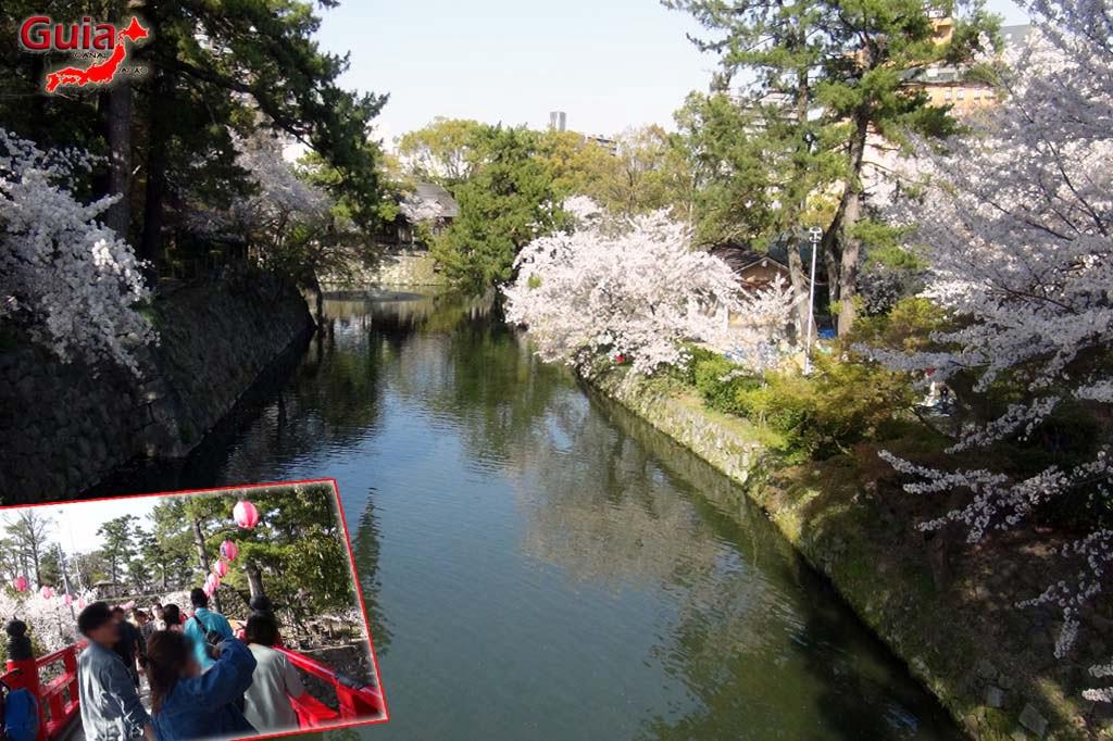 Parque Okazaki - Un espectáculo de los cerezos en flor de sakura 17