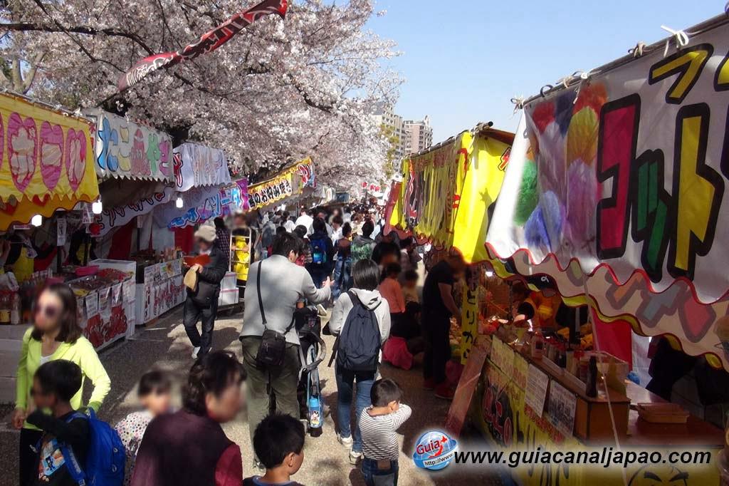 Parque Okazaki - Un espectáculo de los cerezos en flor de sakura 19
