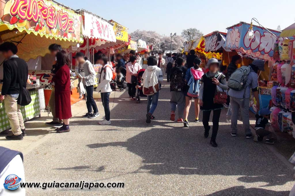 Okazaki Park - A spectacle of the sakura cherry blossoms 21