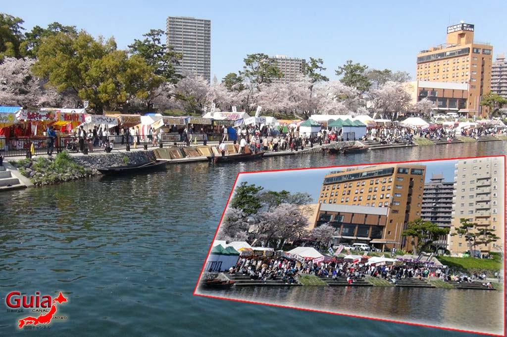 Parque Okazaki - Un espectáculo de los cerezos en flor de sakura 22