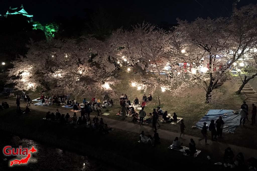 Parque Okazaki - Un espectáculo de los cerezos en flor de sakura 29