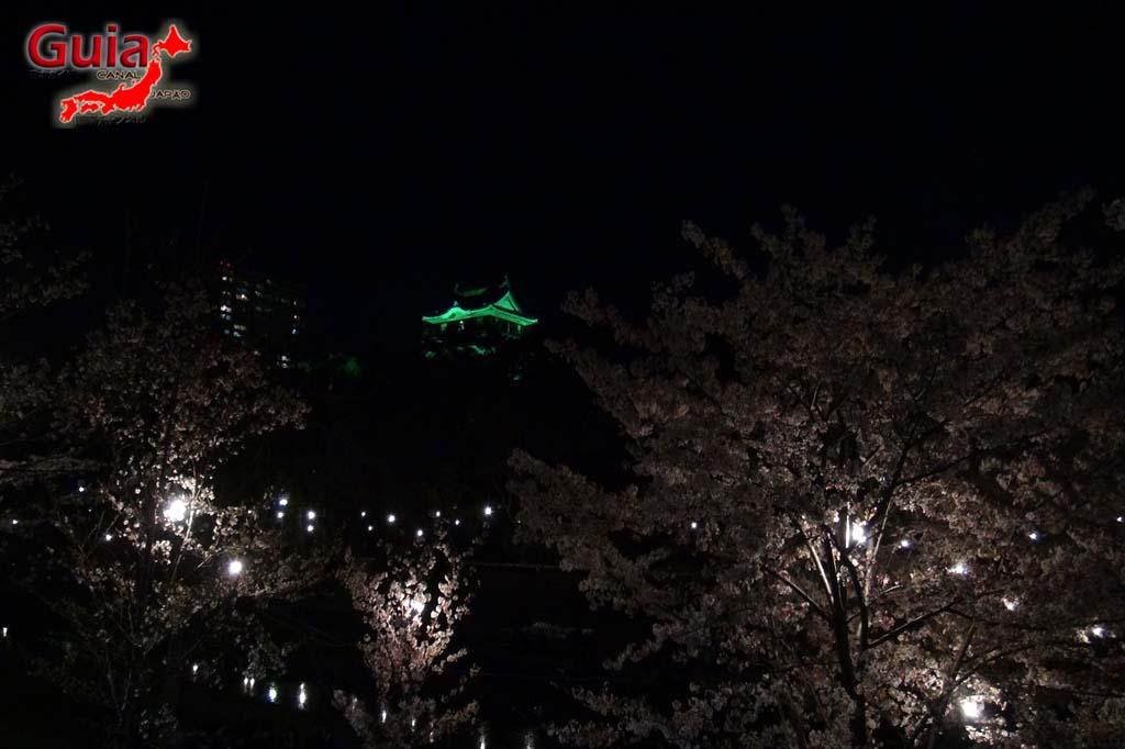Parque Okazaki - Un espectáculo de los cerezos en flor de sakura 30