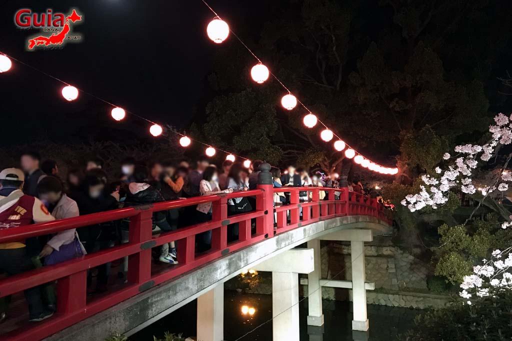 Parque Okazaki - Un espectáculo de los cerezos en flor de sakura 32