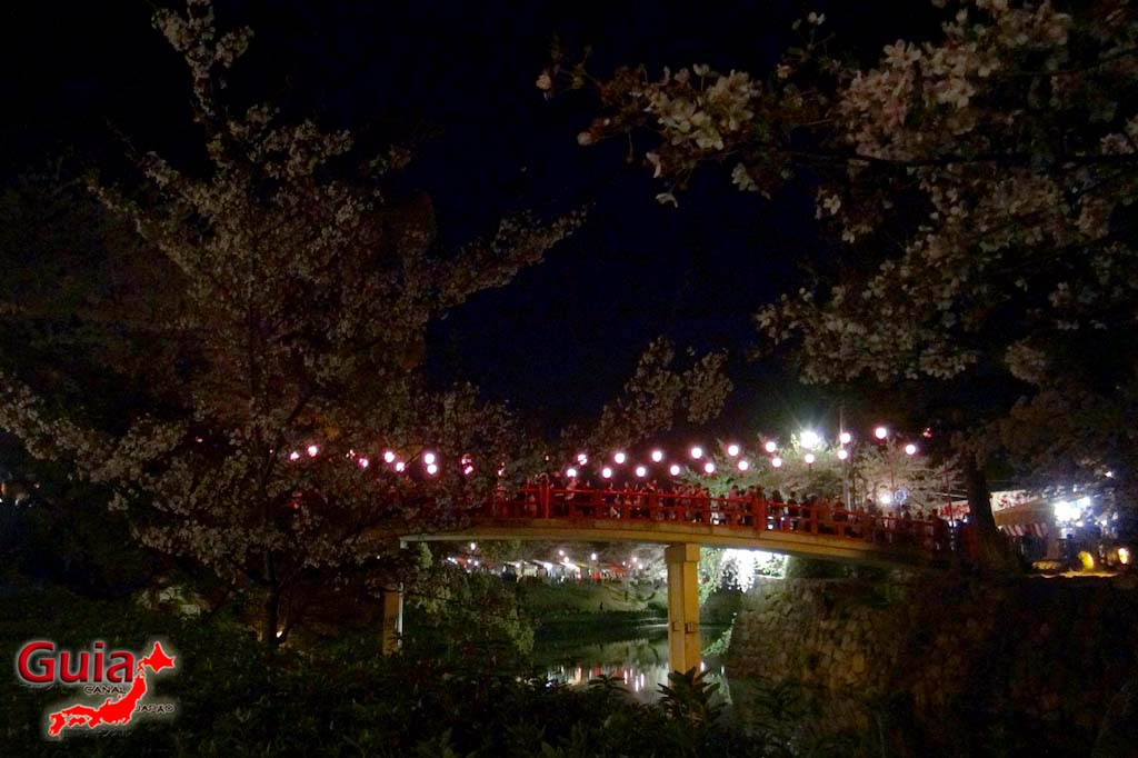 Okazaki Park - A spectacle of the sakura cherry blossoms 33