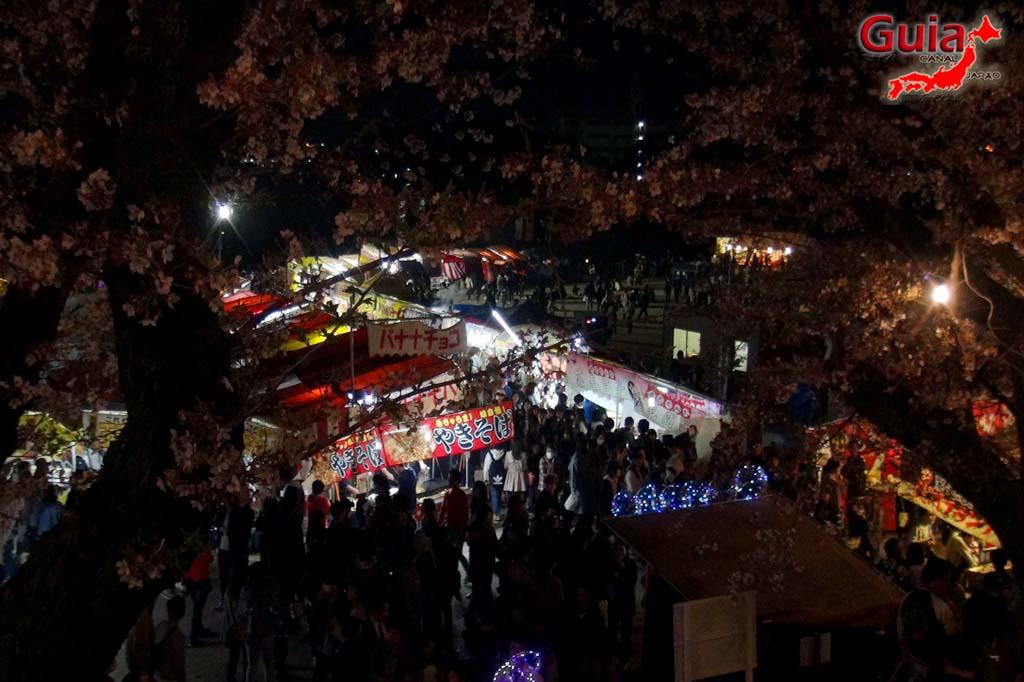 Parque Okazaki - Un espectáculo de los cerezos en flor de sakura 36