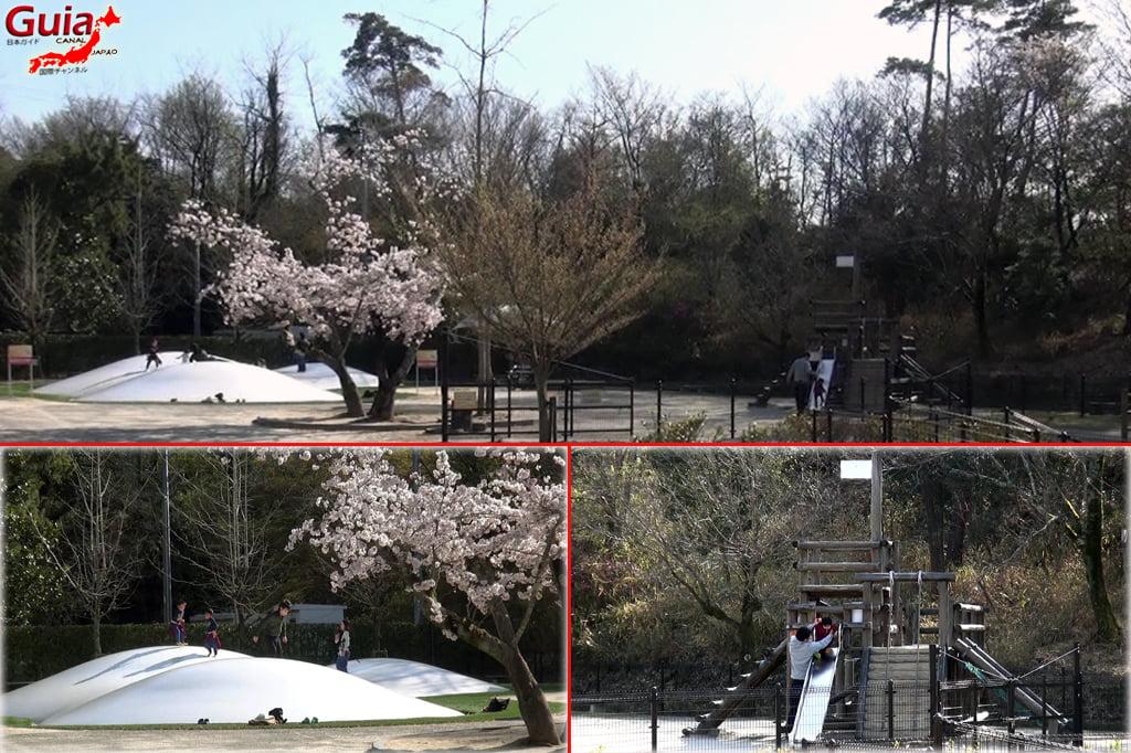 豊田Kurケ池公園と3動物園