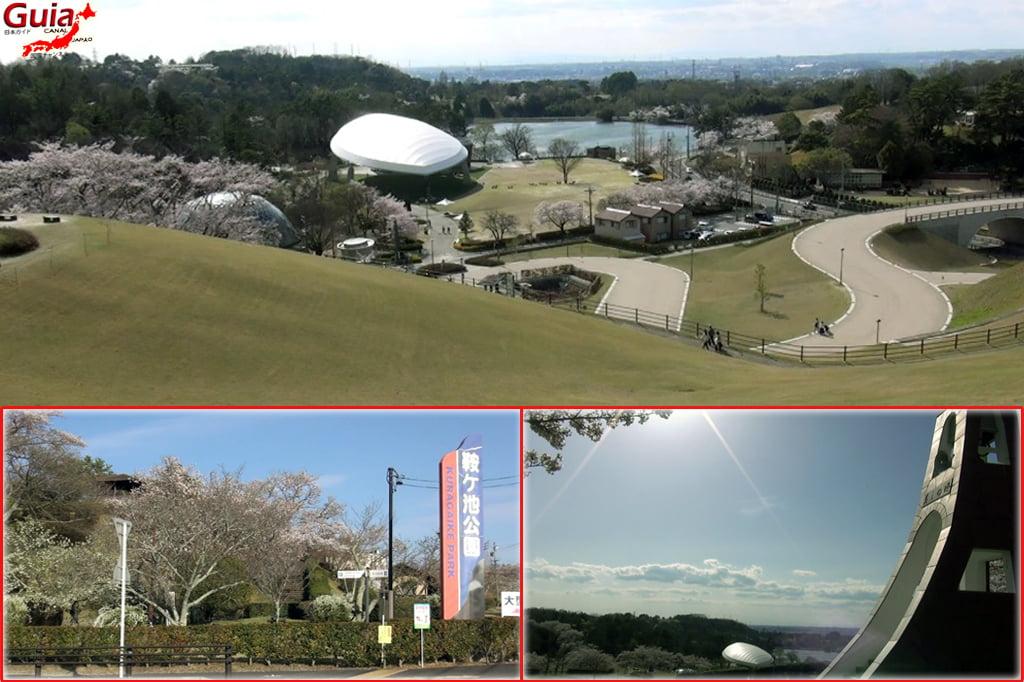 Toyota Kuragaike Park & Zoológico 4