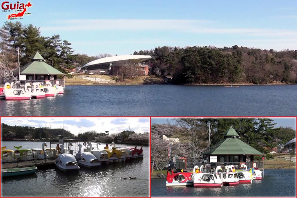 豊田Kurケ池公園と5動物園