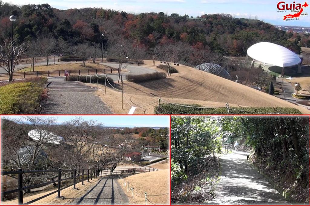 豊田Kurケ池公園と9動物園