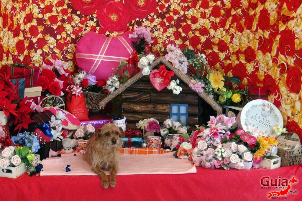 Wanwan Doubutsuen - Okazaki 9 Dog Zoo