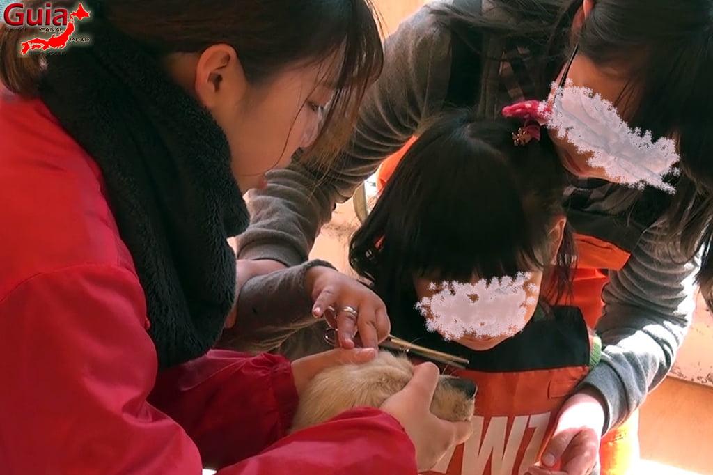 Wanwan Doubutsuen - Okazaki 15 Dog Zoo