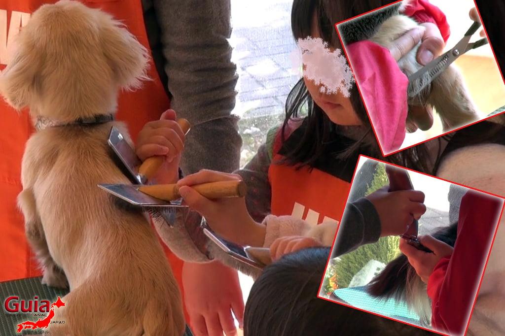 Wanwan Doubutsuen – Zoológico de Cães Okazaki 16