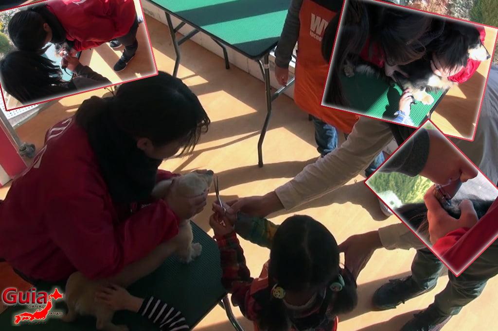 Wanwan Doubutsuen – Zoológico de Cães Okazaki 17