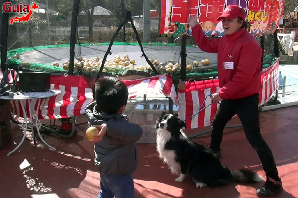 Wanwan Doubutsuen – Zoológico de Cães Okazaki 18