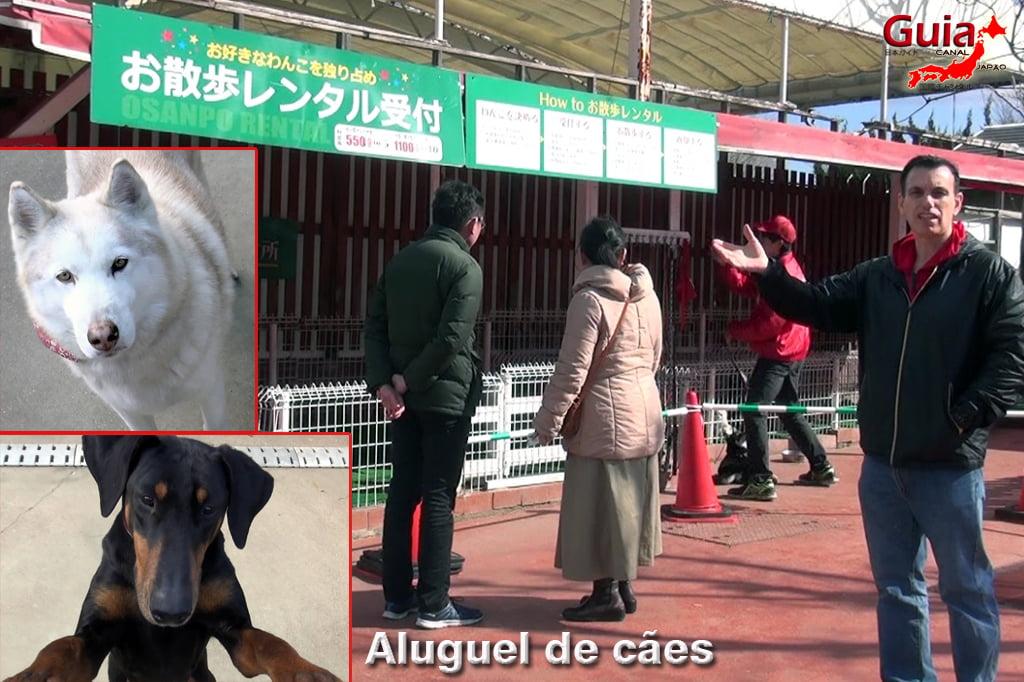 Wanwan Doubutsuen – Zoológico de Cães Okazaki 21