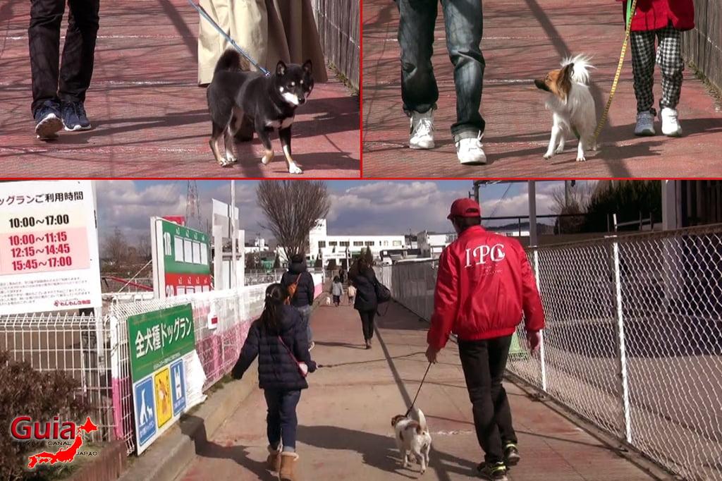 Wanwan Doubutsuen – Zoológico de Cães Okazaki 22