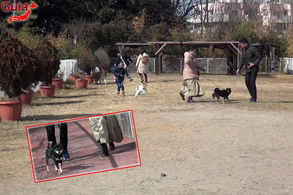 Wanwan Doubutsuen – Zoológico de Cães Okazaki 23