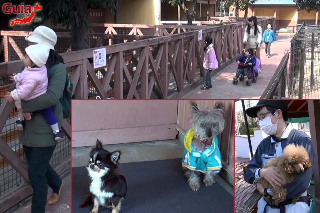 Wanwan Doubutsuen - Okazaki 24 Dog Zoo