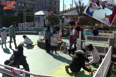 Wanwan Doubutsuen – Zoológico de Cães Okazaki 1