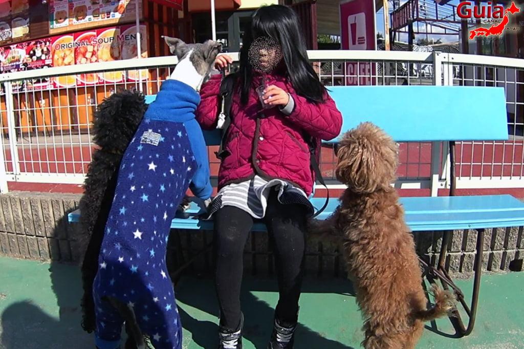Wanwan Doubutsuen - Okazaki 28 Dog Zoo