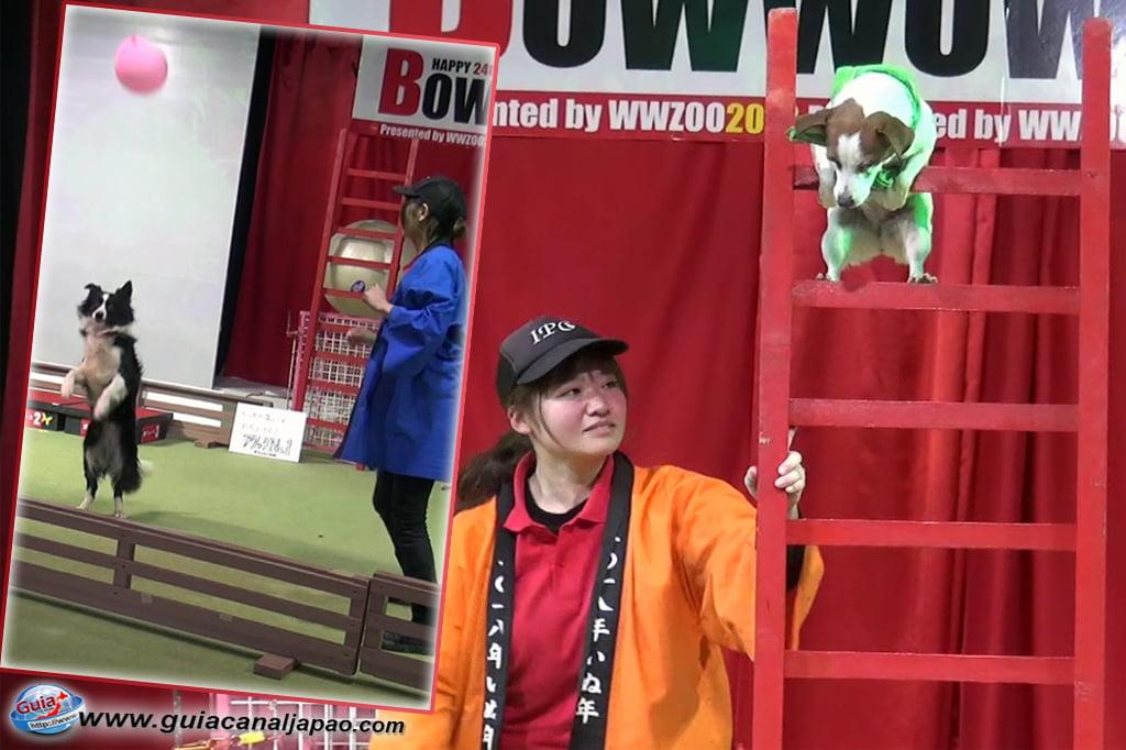 Wanwan Doubutsuen - Okazaki 30 Dog Zoo