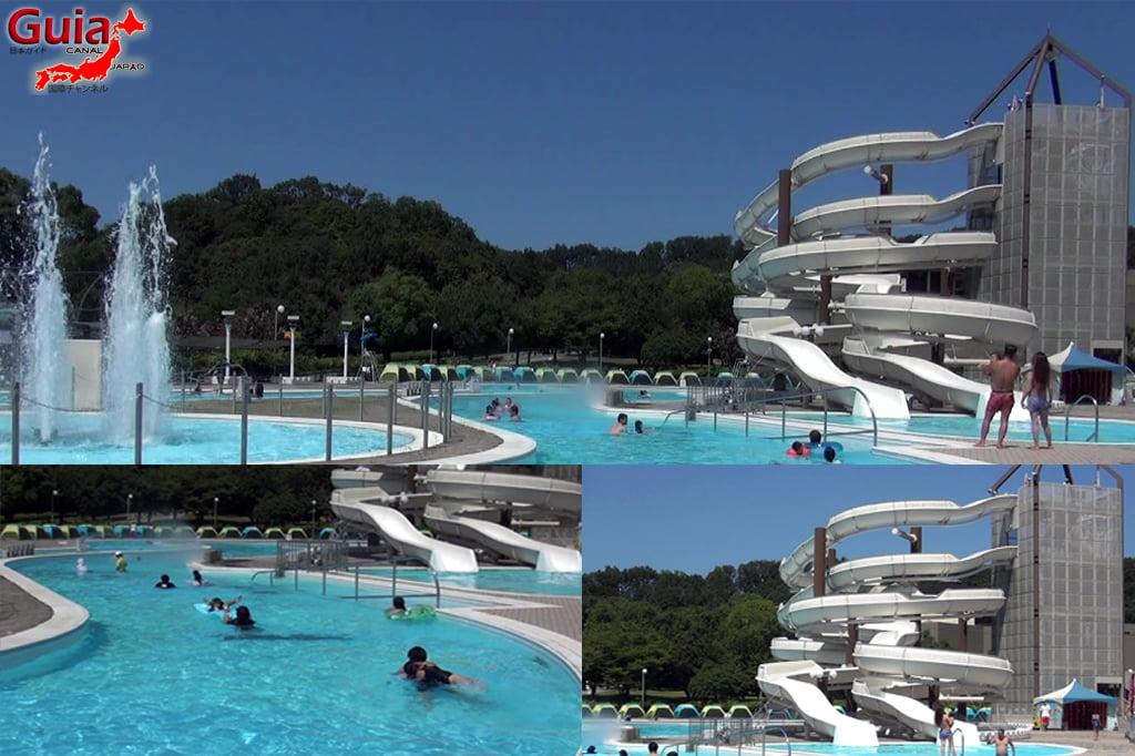 Parque Acuático Toyota - Parque Acuático 3