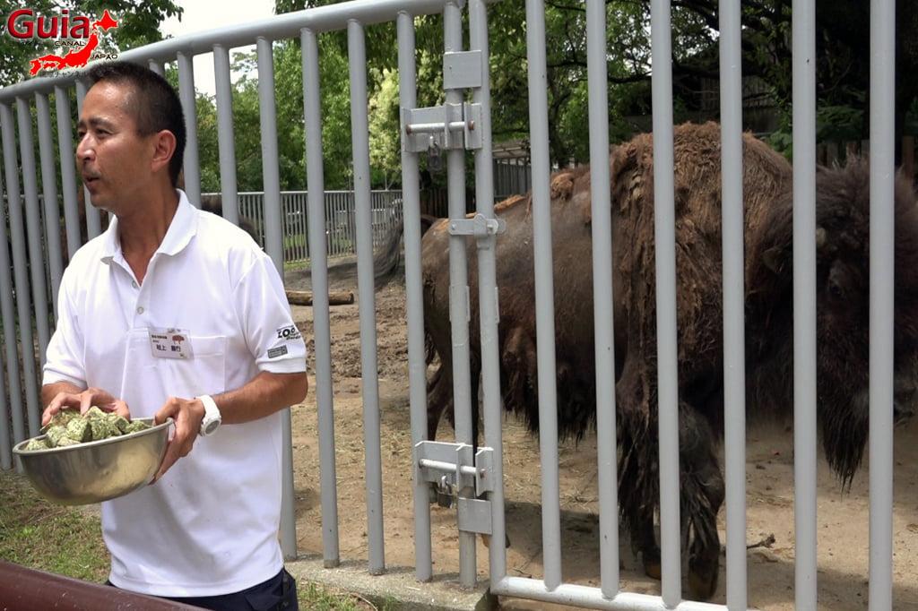 Zoológico Municipal de Hamamatsu 23