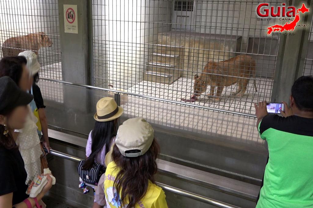 浜松28市立動物園