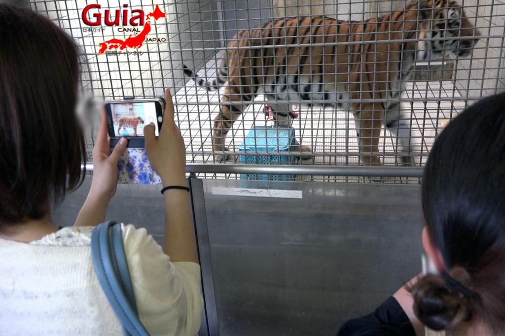 浜松31市立動物園