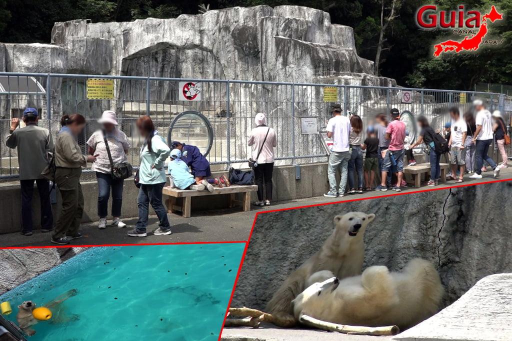 Zoológico Municipal de Hamamatsu 34
