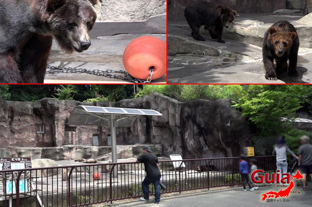Zoológico Municipal de Hamamatsu 36