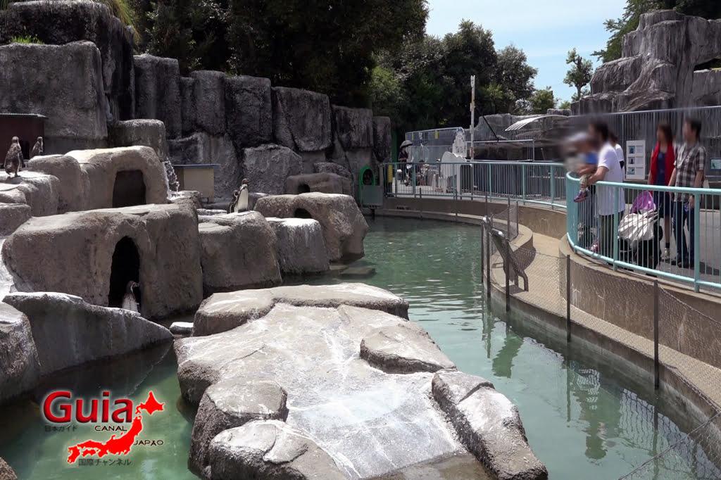 浜松37市立動物園
