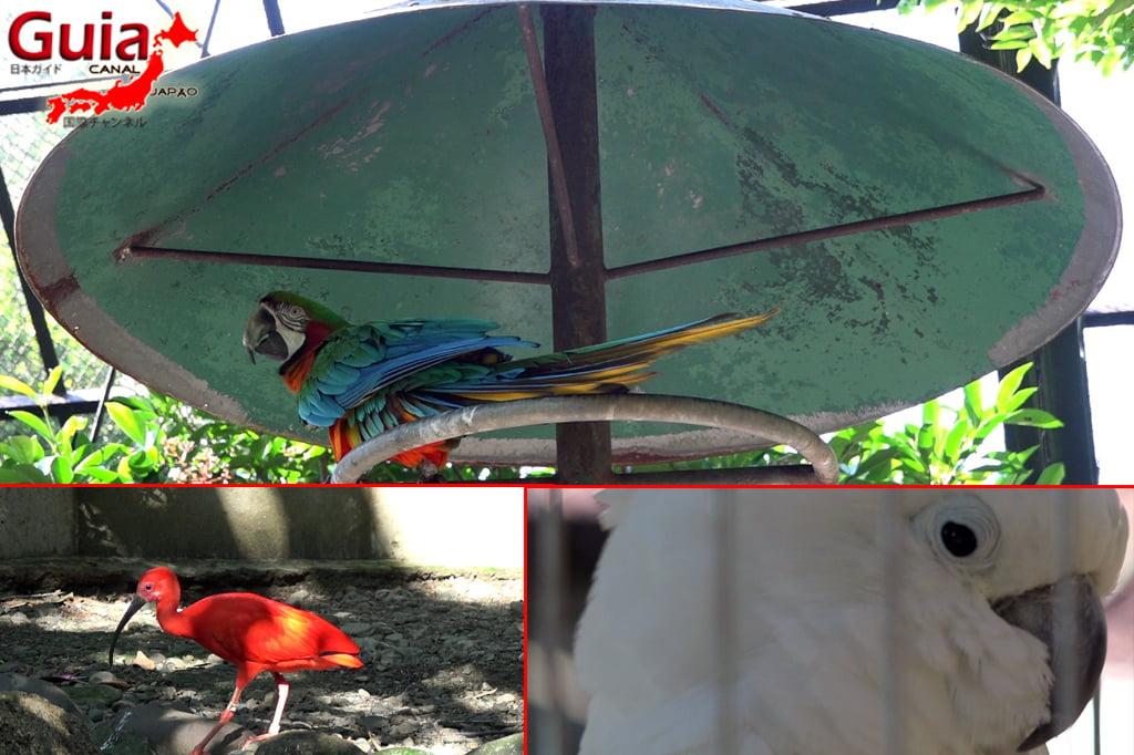 浜松44市立動物園