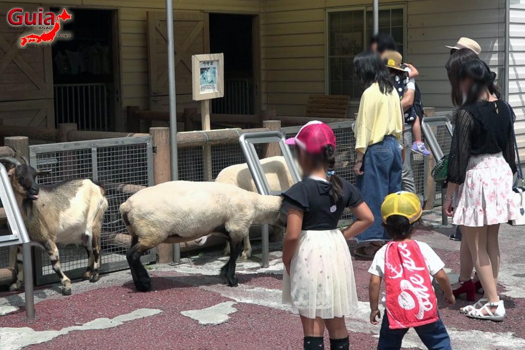 浜松4市立動物園