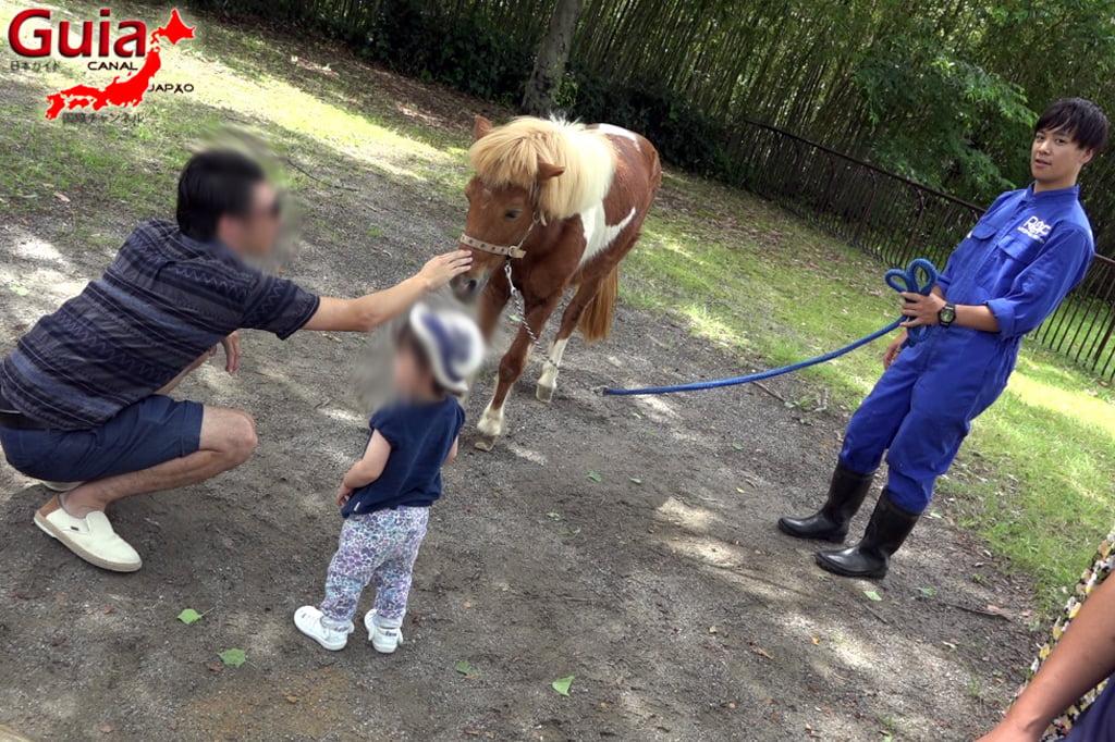 浜松7市立動物園