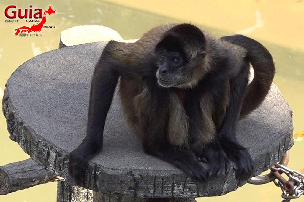 浜松14市立動物園