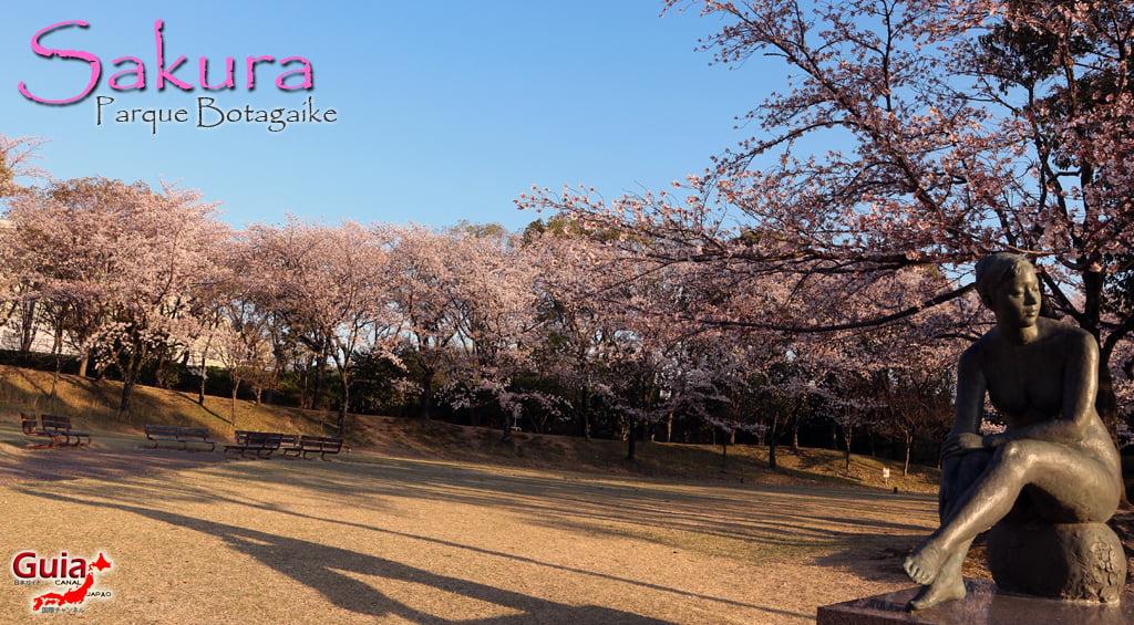 Sakura Botagaike Park - Miyoshi 「保 田 ヶ 池 公園」 1
