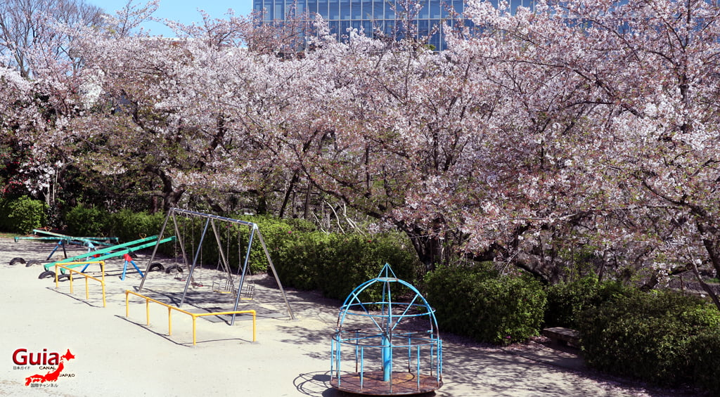 Сакура Кижо Парк - Кария 「亀 城 公園」 16