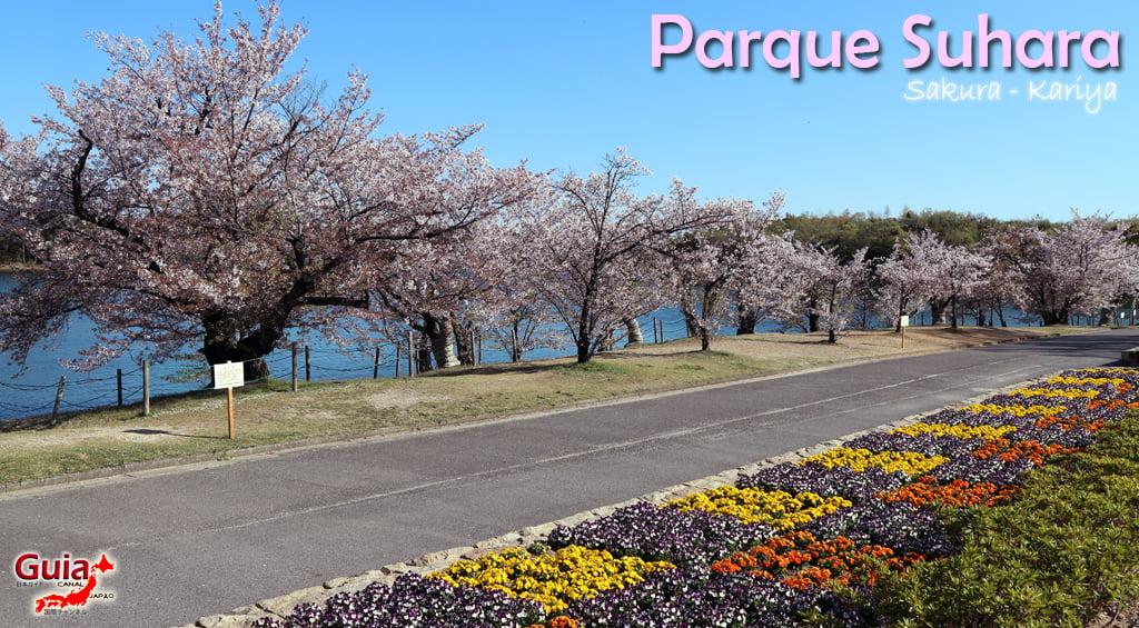 Сакура Сухара Парк - Кария 「洲 原 公園」 1